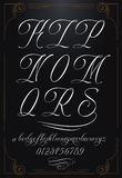 Calligraphy letters with numbers. Hand drawn vector calligraphy tattoo alphabet with numbers Royalty Free Stock Image