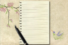 Calligraphy pen and old writing paper Stock Images