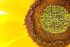 Calligraphy on sunflower Stock Image