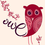 Calligraphy word Owl and sketched owl Stock Photos