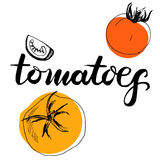 Calligraphy word tomatoes Royalty Free Stock Photo