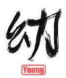 Calligraphy word, young Stock Photos