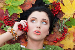 Calling autumn Royalty Free Stock Image