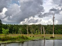 Calling Panther Lake. A view of Calling Panther Lake near Crystal Springs, Mississippi, USA Royalty Free Stock Photos