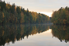 Calm autumn forest lake reflection Stock Photo