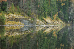 Calm autumn forest lake reflection Royalty Free Stock Photos