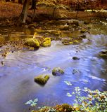 Calm autumn river royalty free stock photography