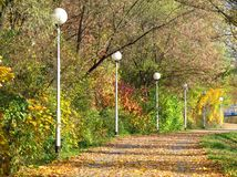 Calm autumn walk. Colorful trees growing along the pavement in autumn and some white street lamps Royalty Free Stock Photo