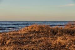 Calm Baltic sea seashore beach background in golden hour. Calm Baltic sea background in golden hour beach sand dune grass latvia sunset path landscape sky coast royalty free stock photo