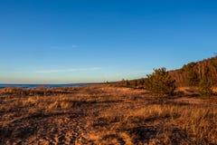 Calm Baltic sea seashore beach background in golden hour. Calm Baltic sea background in golden hour beach sand dune grass latvia sunset path landscape sky coast royalty free stock photos