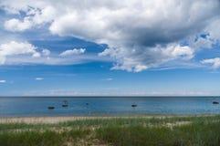 Calm Baltic sea shore with sedge grass Royalty Free Stock Photos