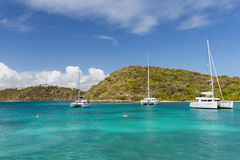 A calm bay in Antigua. Three catamarans in a calm bay in Antigua Royalty Free Stock Images