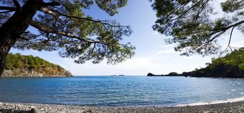 Calm bay and pebbly deserted beach with shadow from pine trees a Stock Images