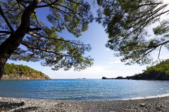 Calm bay and pebbly deserted beach with shadow from pine trees a. T warm sun summer day. Mediterranean sea, Turkey. Wide angle view Stock Photo