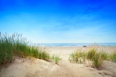 Calm beach with dunes and green grass. Tranquil ocean Stock Image