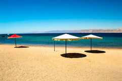 Calm beach. Scene with white sunshades in an early morning Summer day on the red sea Stock Photography