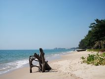 Calm beach with trees Royalty Free Stock Photography
