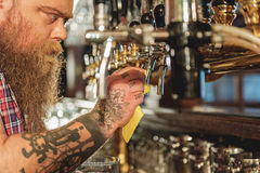 Calm bearded male washing beer tap Stock Photos