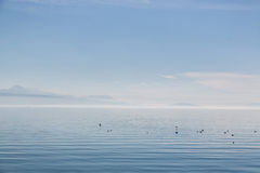 Calm and beautiful Lake Geneva Stock Photos