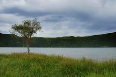 Calm beautiful landscape Blue Lake or Lagoa Azul in Sete Cidades  Sao Miguel Azores island Portugal Royalty Free Stock Photo