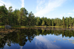 Calm Blue Lake. A calm forest lake in Salo, Finland, mirroring the sky and forest Royalty Free Stock Photo