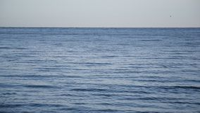 Calm blue sea or ocean with small waves stock video footage