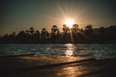 Calm Body of Water Near Trees during Golden Hour stock images
