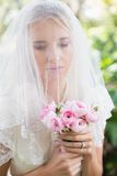 Calm bride wearing veil over face holding rose bouquet. In the countryside Royalty Free Stock Image