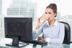 Calm brunette businesswoman drinking from disposable cup Stock Image