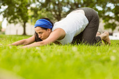 Calm brunette doing yoga on grass Royalty Free Stock Images