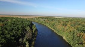 The calm clean river flows between green trees. Aerial view stock footage