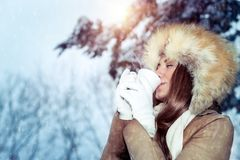 Drinking tea in the winter park. Calm contented woman gladly drinks hot coffee among snow-covered trees, enjoys the winter holidays walking in the park in frosty royalty free stock photography