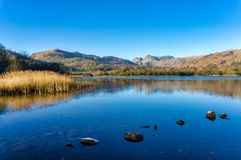 A calm Elterwater with the Langdale Pikes in the distance Royalty Free Stock Photos