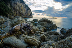Calm evening in Agios Gordios. Shot taken in Agios Gordios, Corfu, Greece, 2014 Stock Images