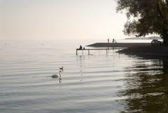 Calm evening athe laggon Stock Image
