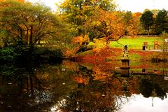 Calm Fall Water Royalty Free Stock Images