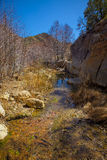 Calm flowing creek through valley Royalty Free Stock Images
