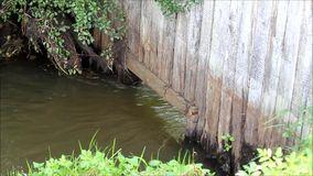 Calm flowing water under a wooden wall stock video footage