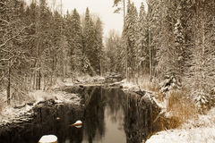 Calm Forest River after Snowfall Royalty Free Stock Image