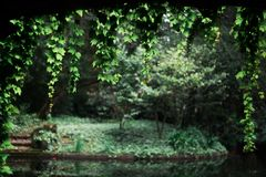 Calm garden on the background Royalty Free Stock Photo