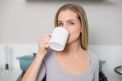 Calm gorgeous model drinking from mug Royalty Free Stock Image