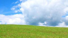 Calm. Green grass and blue sky with clouds stock video