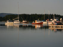 Calm Harbor. Colorfull boats anchored in calm harbor in Maine Royalty Free Stock Photography