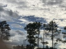 Calm after hurricane Florence in Fayetteville North Carolina. Trees clouds sun nature royalty free stock image