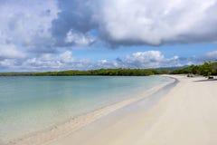 Calm Lagoon on Tortuga Bay 1. Beautiful Sandy Beach of Tortuga Bay in Santa Cruz, Galapagos Islands 1 royalty free stock photo