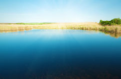 Calm lake with blue water stock image