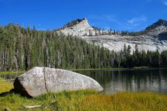 Calm lake with grass, rock, trees, mountains and the Moon Stock Images
