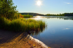 Calm lake and hard sun. Calm lake, hard sun with reeds and piece of beach Stock Photos