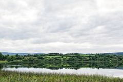 Calm Lake in Irelands Countryside. This is a picture of a still lake in Irelands countryside. The water is so the it is like a mirror. There are swans cliding by royalty free stock photo