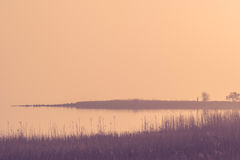 Calm lake in a misty sunrise Royalty Free Stock Image